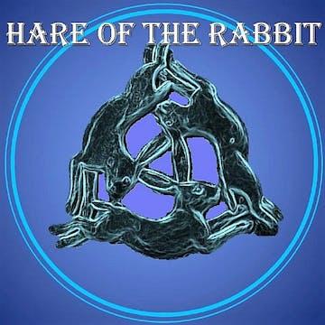Hare of the rabbit podcast: BONUS - International Rabbit Day